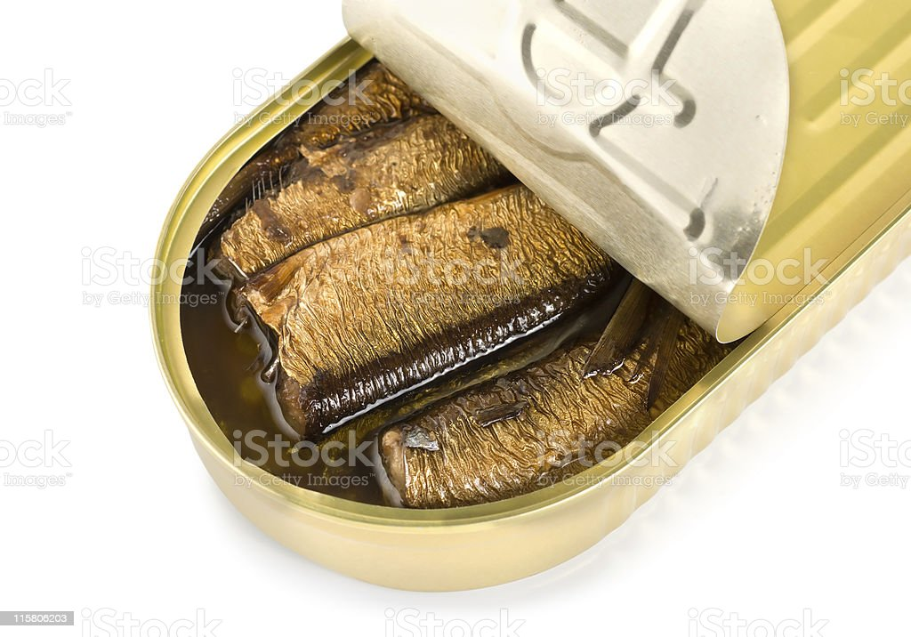 Canned sardines isolated royalty-free stock photo