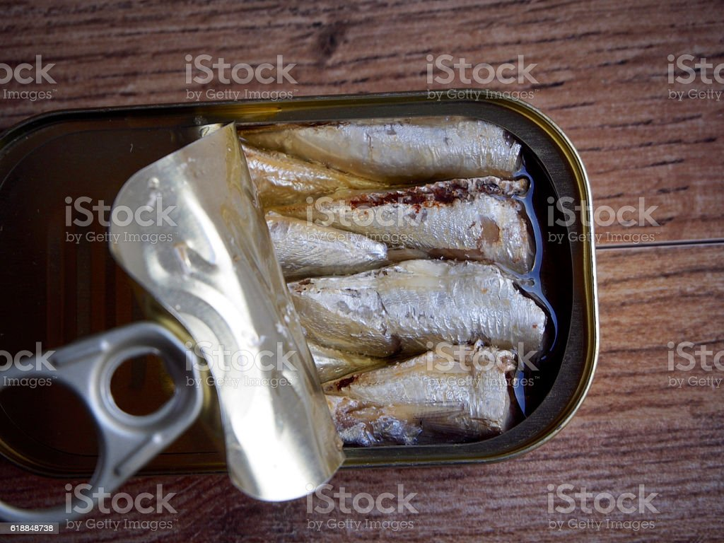 Canned sardines stock photo