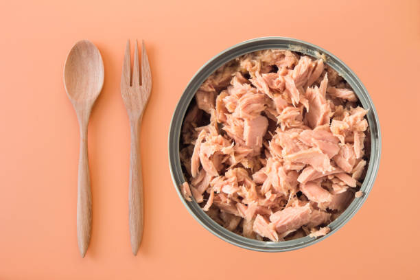 canned tuna isolated on orange background / Canned soy free albacore white meat tuna packed in water canned tuna isolated on orange background / Canned soy free albacore white meat tuna packed in water tuna animal stock pictures, royalty-free photos & images