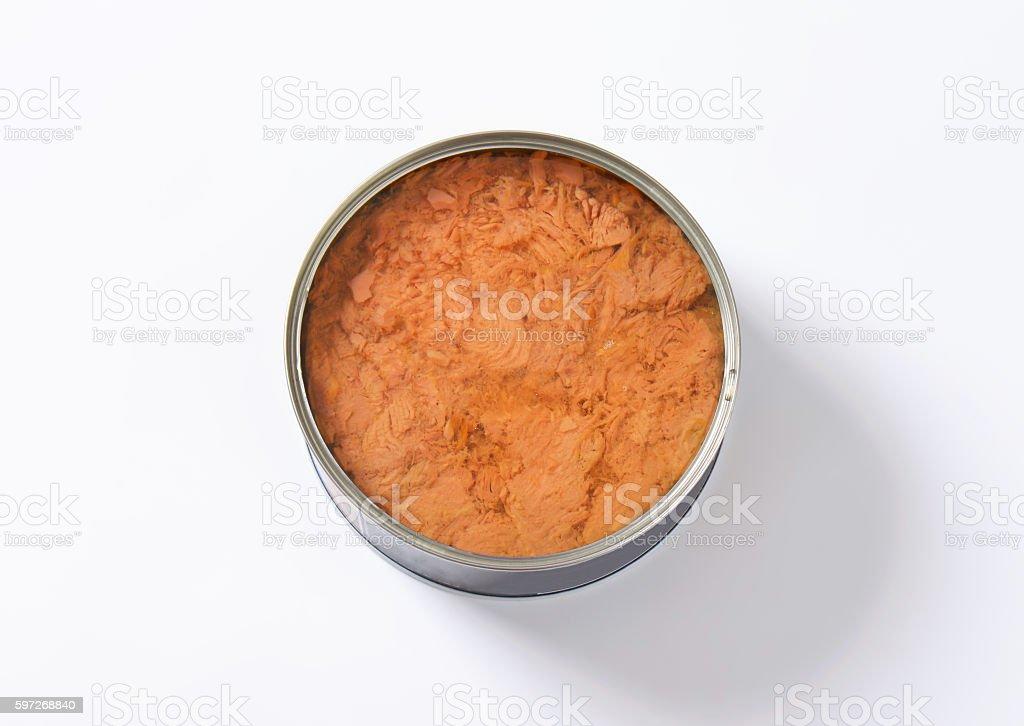 canned tuna royalty-free stock photo