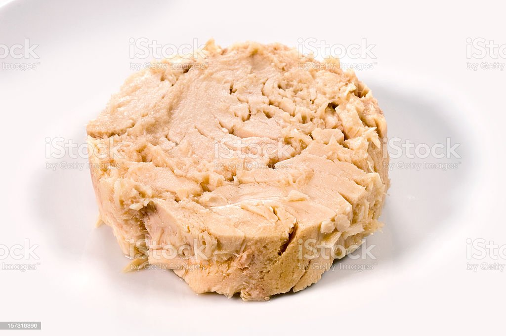 Canned white meat tuna royalty-free stock photo