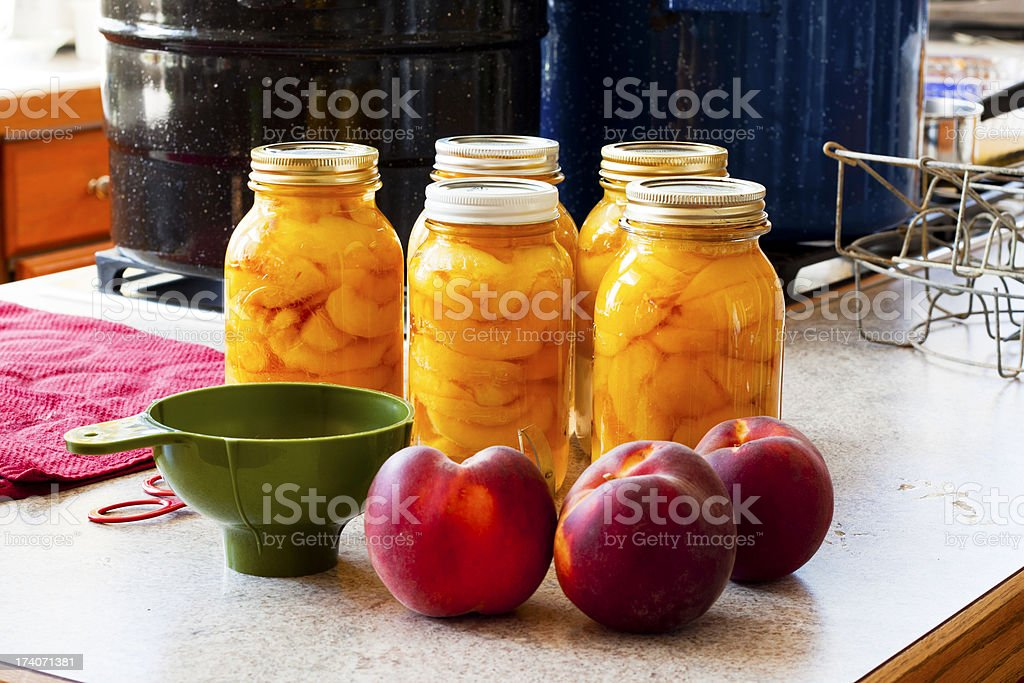Canning Peaches - Five Full Jars royalty-free stock photo