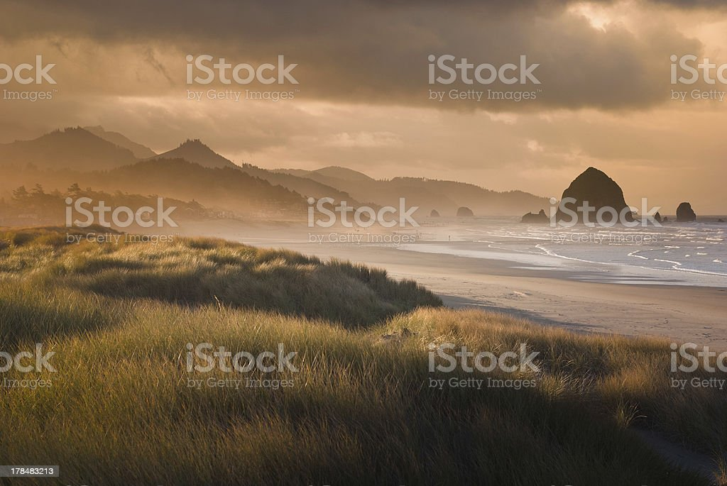 Cannon Beach in Gold stock photo