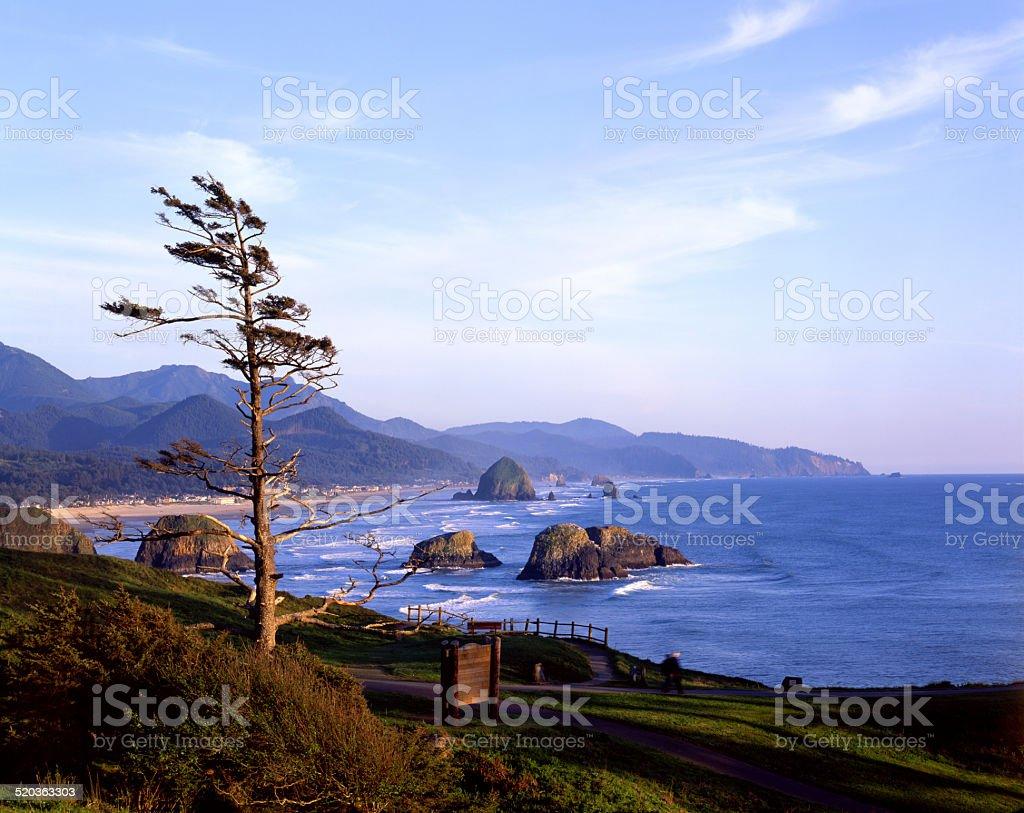 Cannon Beach, Oregon Coast, Haystack rock, 4x5 stock photo