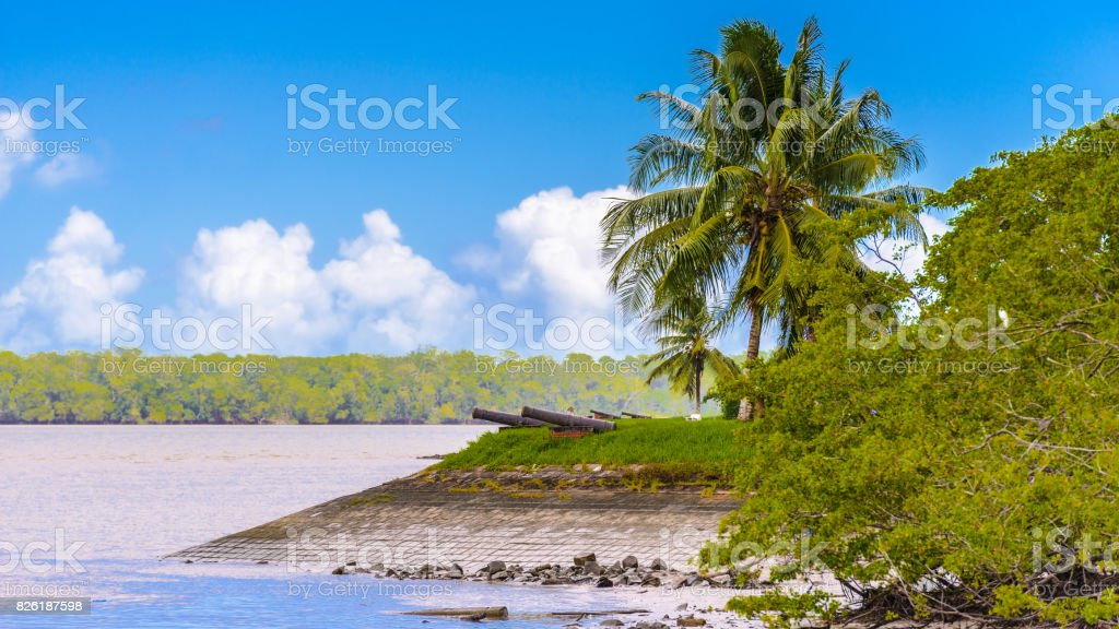 Cannons on the coast of the Suriname river in Suriname, South America stock photo