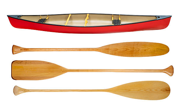 canoe and wooden paddles isolated - 小型船舶 ストックフォトと画像