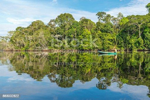 istock Canoe in the Amazon River 883002822