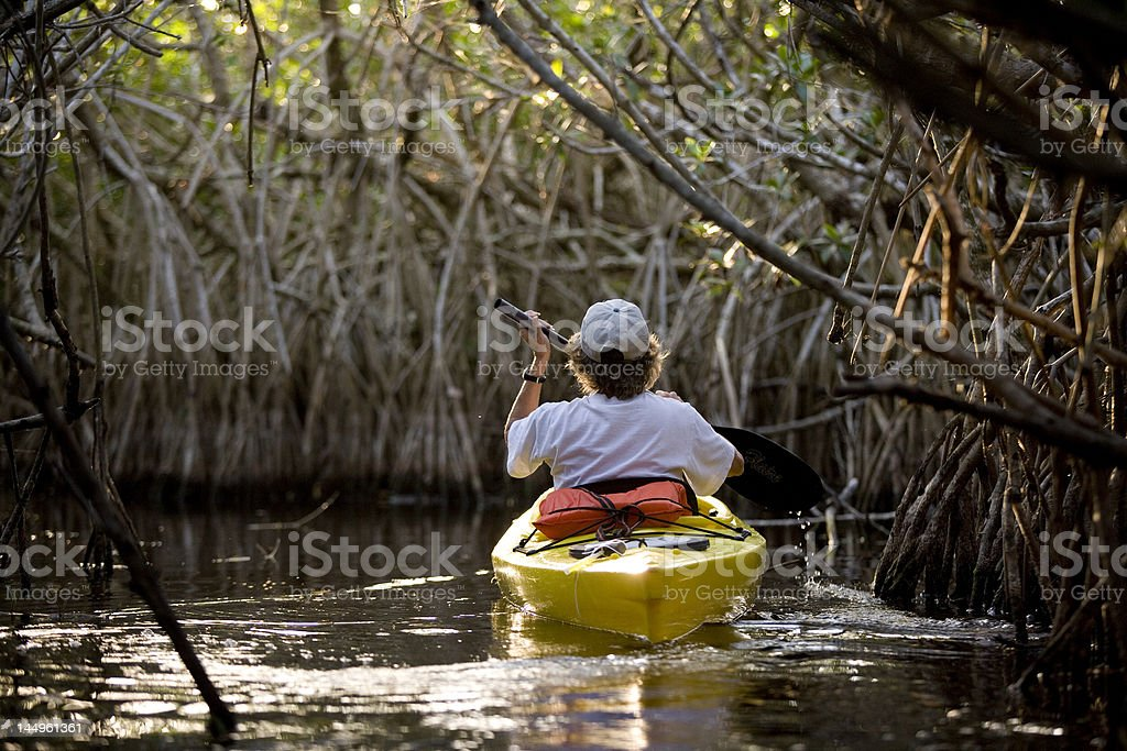 canoe in the river royalty-free stock photo