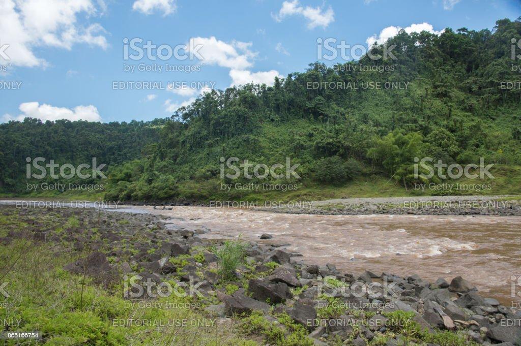Canoeing through the Rainforest stock photo