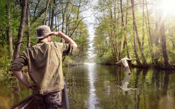 canoeist watching a flying crane - osservare gli uccelli foto e immagini stock