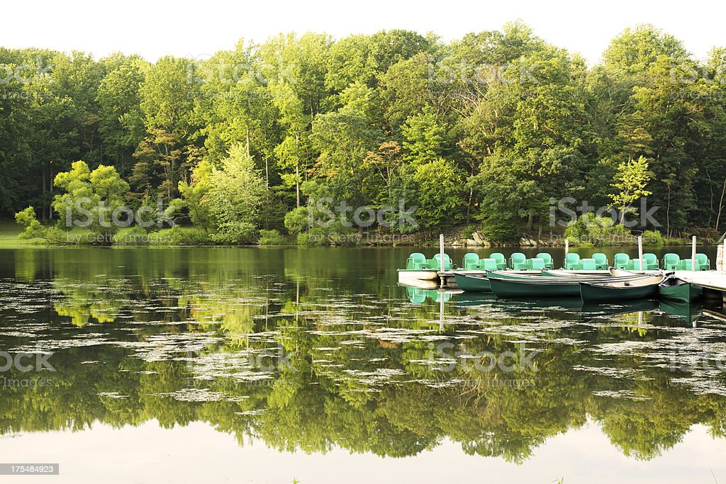 Canoes and Paddleboats in a Lake stock photo