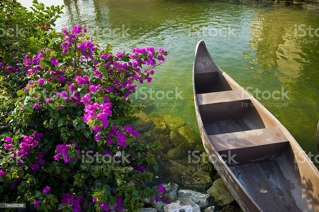 Canoes and Pink Flowers on Lake royalty-free stock photo
