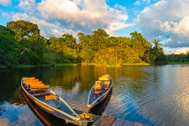 Canoes at Sunset in the Amazon Rainforest Two traditional wooden canoes at sunset in the Amazon River Basin with the tropical rainforest in the background inside the Yasuni National Park, Ecuador, South America. amazon river stock pictures, royalty-free photos & images