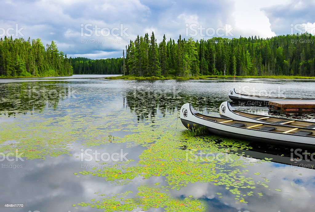 Canoes Floating On A Lake Quebec Canada Stock Photo ...