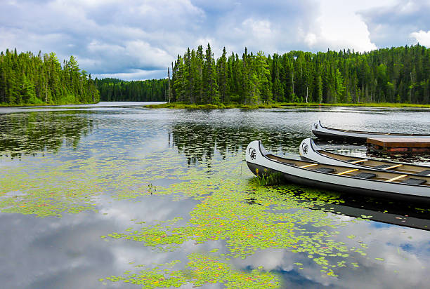 Canoes floating on a lake, Quebec, Canada Canoes floating on a peaceful lake, Quebec, Canada wildlife reserve stock pictures, royalty-free photos & images