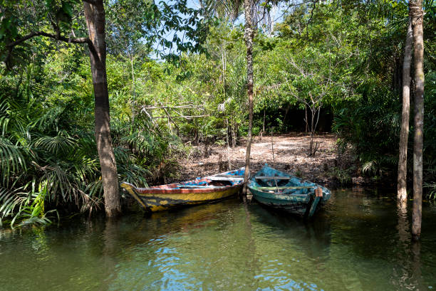 Canoes on the banks of the Tapajós River stock photo