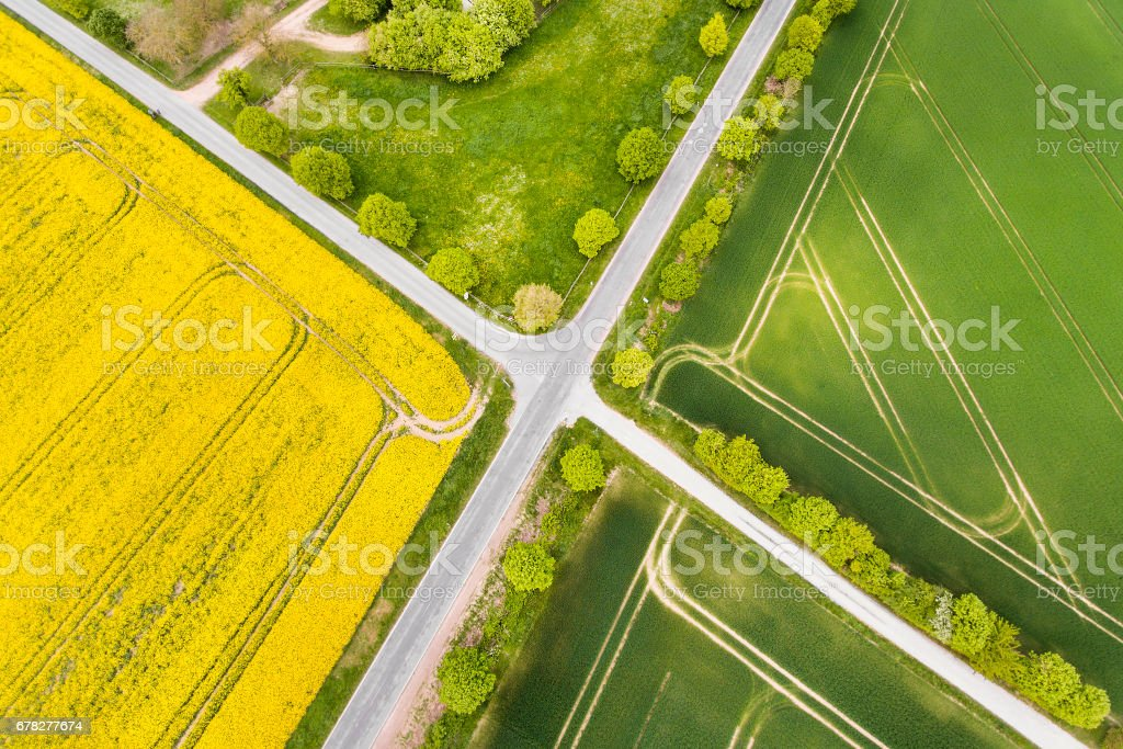 Canola and wheat fields in spring - aerial view stock photo