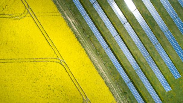 Rapsfelder und Solarkraftwerk im Frühling - Luftbild – Foto