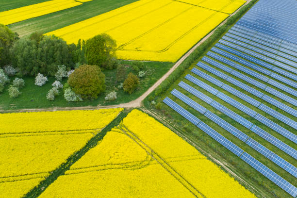 Canola fields and solar power plant in springtime - aerial view stock photo