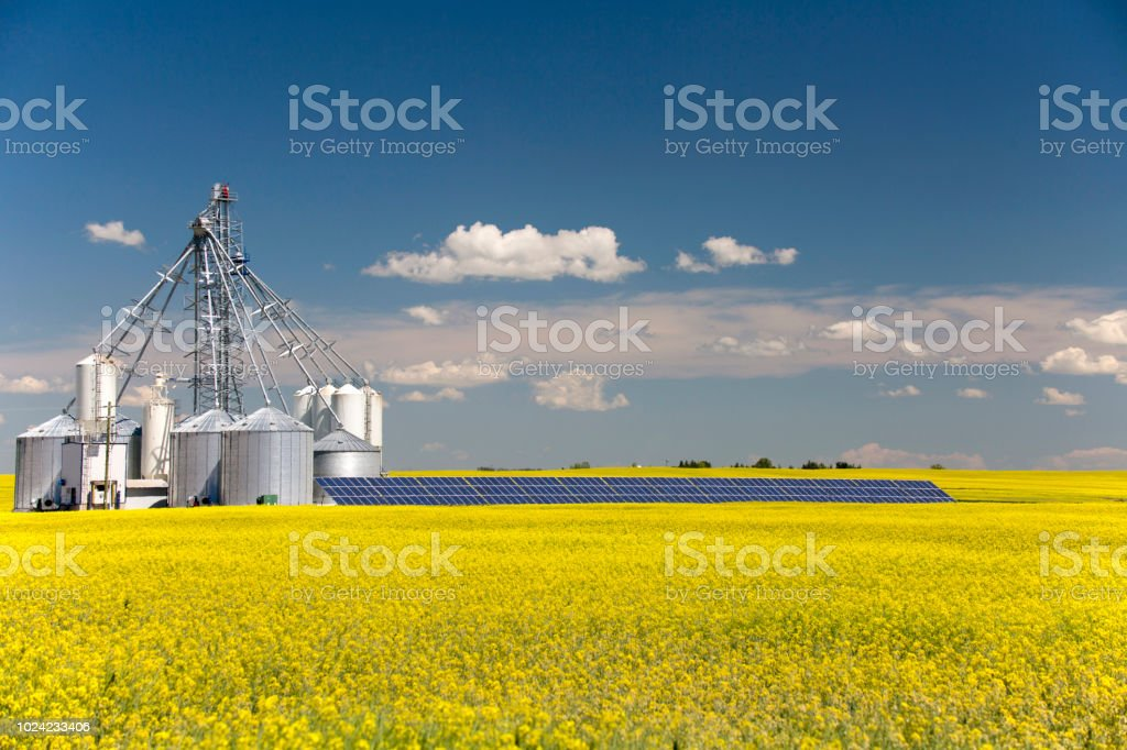Canola Grain Silo Solar Panel stock photo