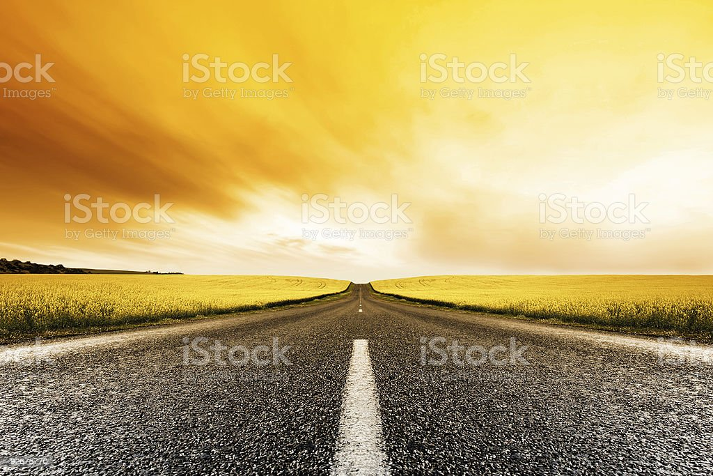 Canola Road Sunset stock photo