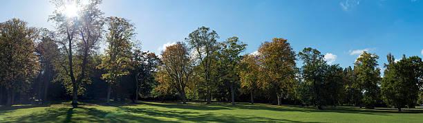 Canon Hill Park Edgbaston treeline panorama. stock photo