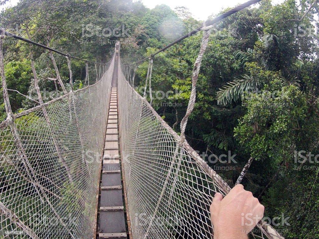 Canopy Bridge Walk stock photo