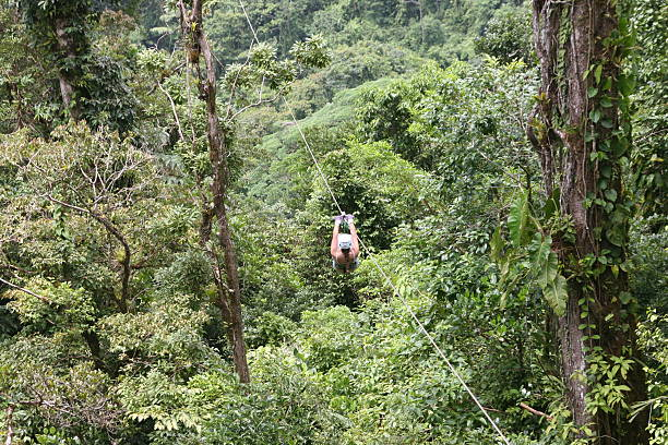 Canopy Tour in Costa Rica stock photo