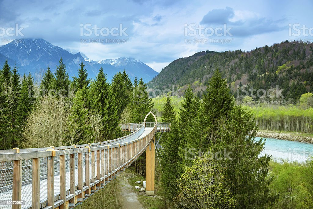Canopy Walkway with Alpine Mountain view stock photo