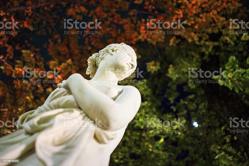 Canova's Venus royalty-free stock photo