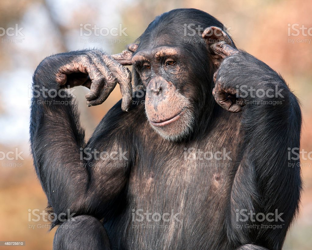I can't hear you stock photo