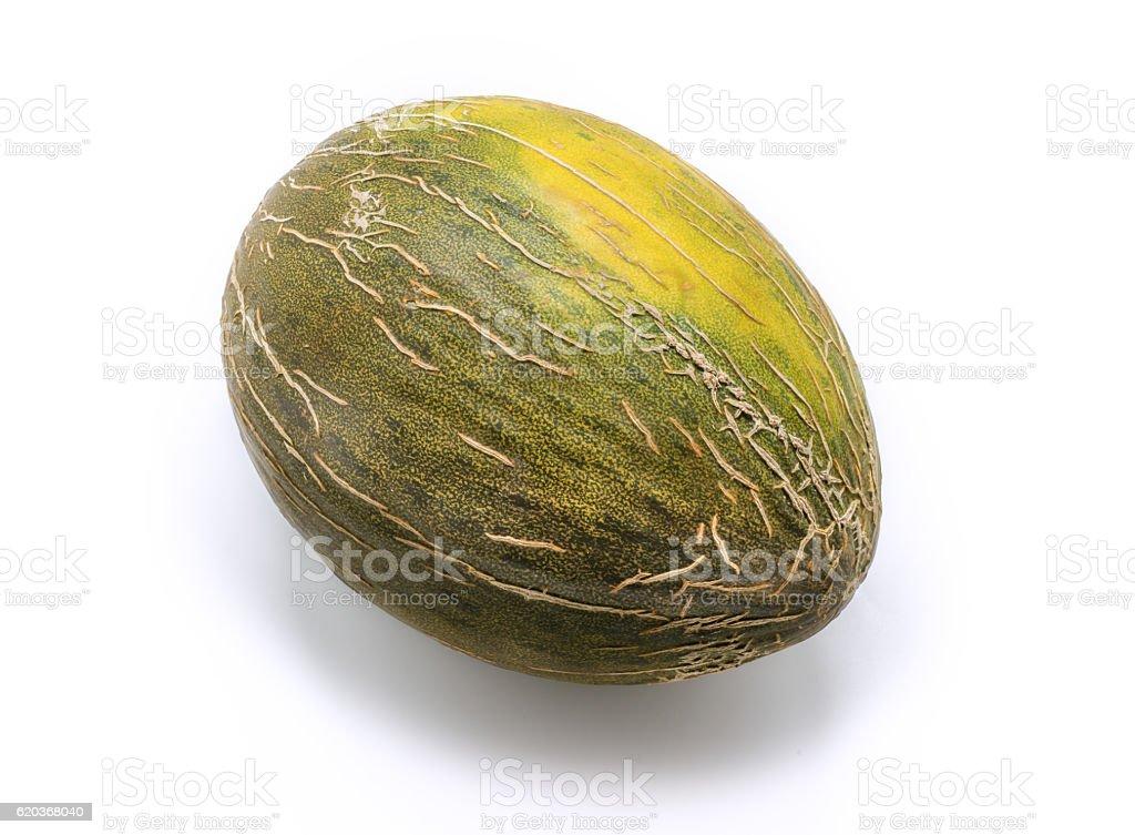 Kantalup melon odizolowane na białym zbiór zdjęć royalty-free