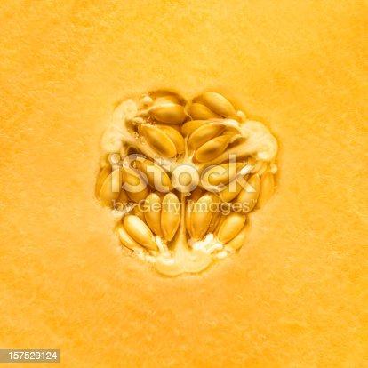 Cantaloupe melon background