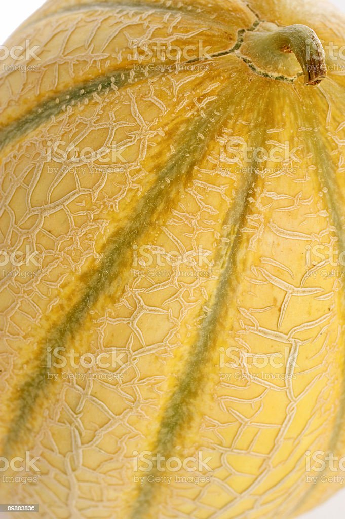 Cantaloupe Skin royalty-free stock photo