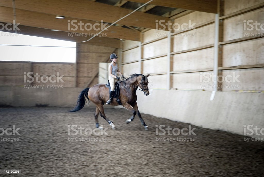 Canter stock photo