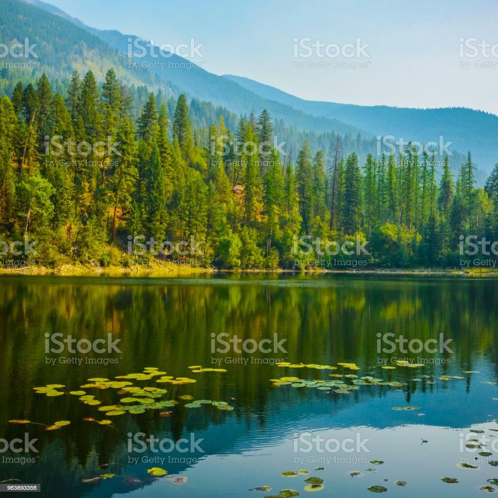 Canuck Lake Premier Lake Provincial Park British Columbia - Royalty-free Blue Stock Photo