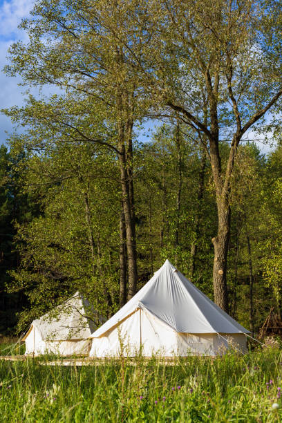Canvas bell tents at the forest on a sunny day stock photo
