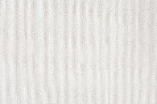 Canvas texture coated by white primer. High resolution photo.