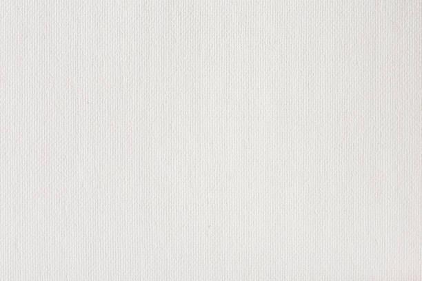 canvas texture coated by white primer - lona têxtil imagens e fotografias de stock