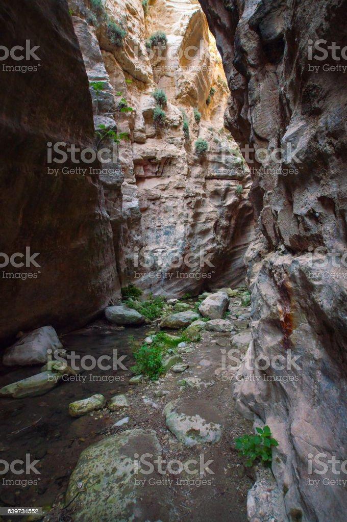 Canyon Avakas stock photo