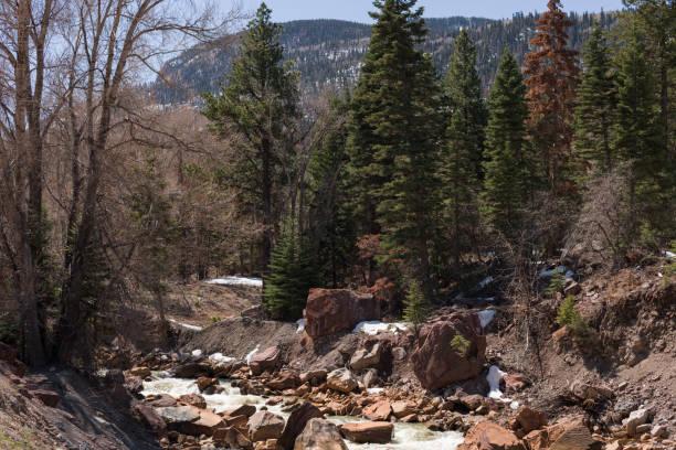 Canyon Creek outside of Ouray, Colorado stock photo