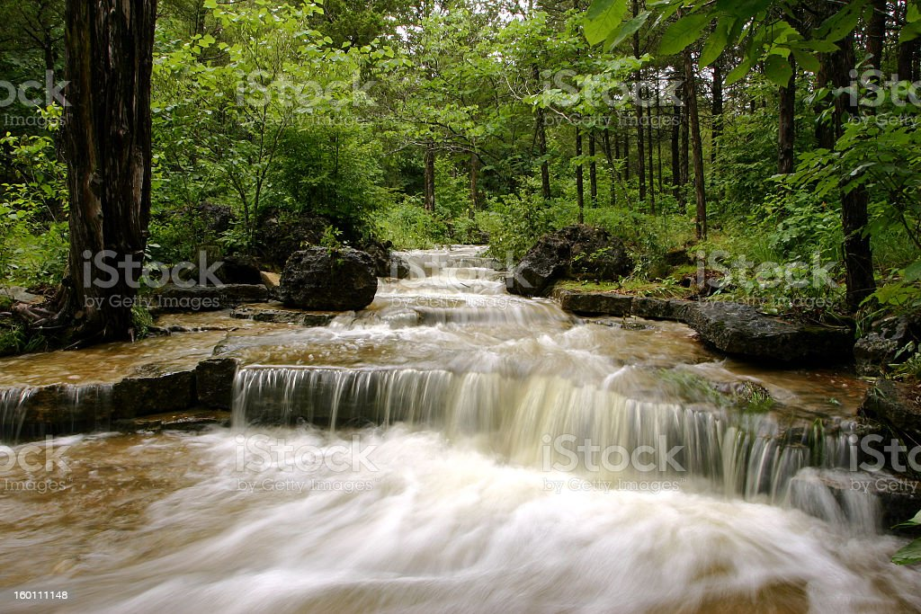 Canyon Creek Rapids in a green forest stock photo