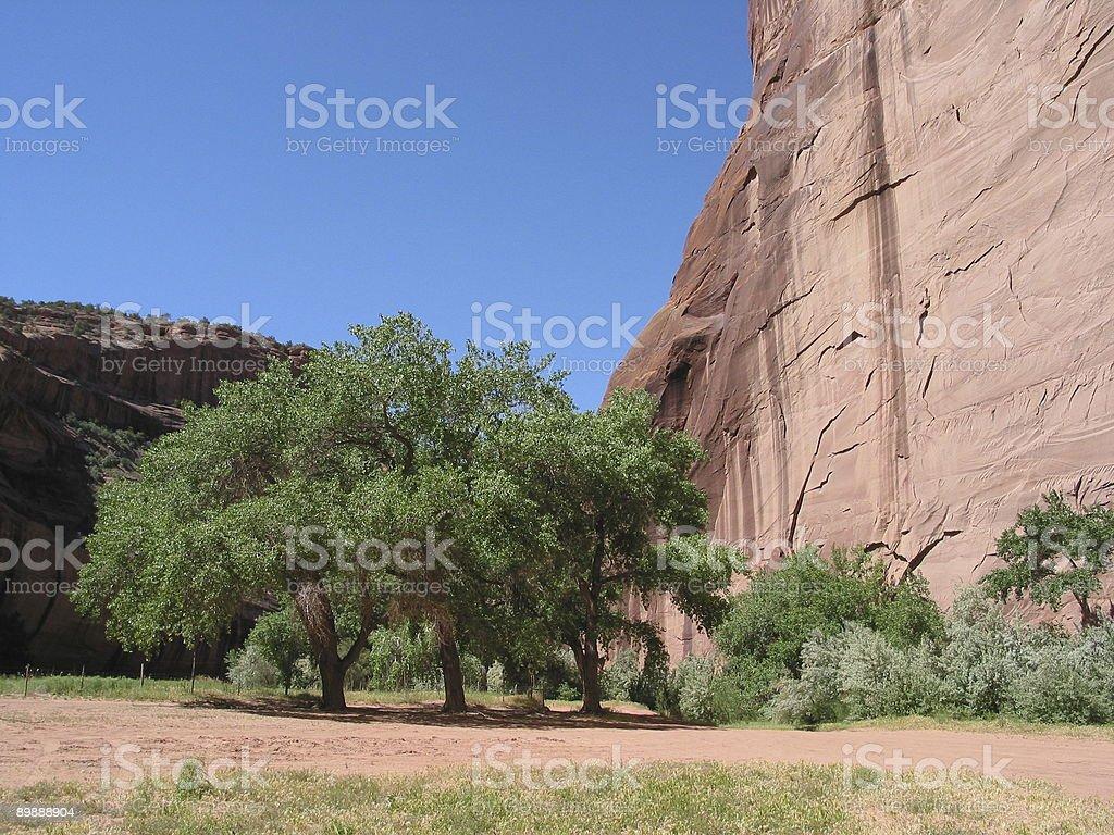 Национальный парк Каньон Де Шейи Национальный памятник-Аризона Стоковые фото Стоковая фотография