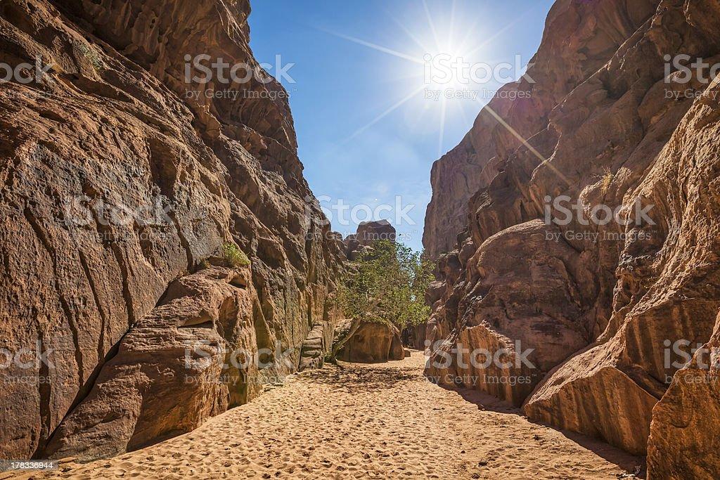 Canyon in Wadi Rum - desert of Jordan royalty-free stock photo