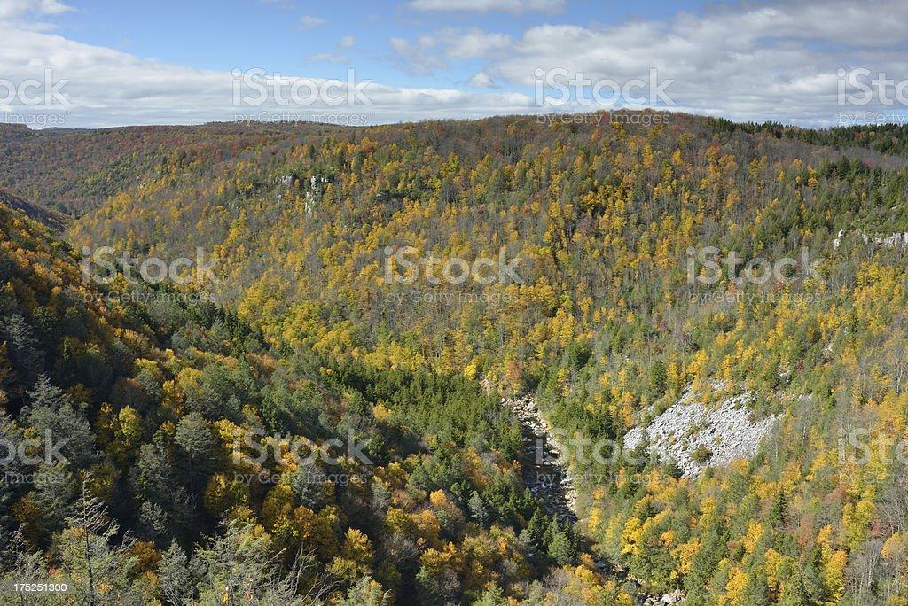 Canyon of Blackwater River royalty-free stock photo