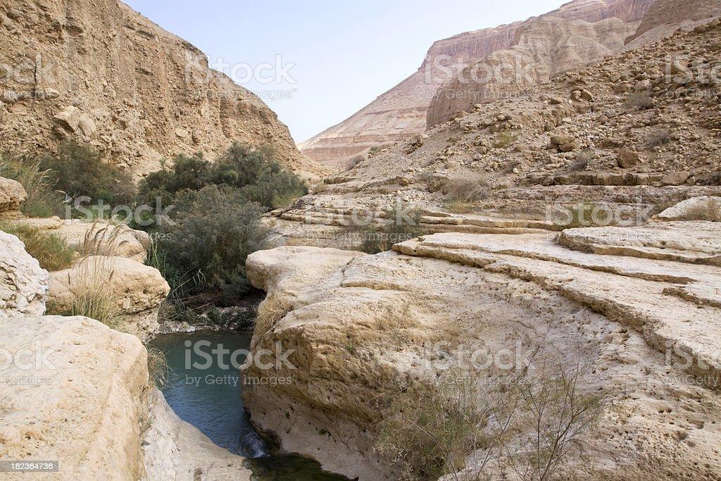 Canyon stream royalty-free stock photo