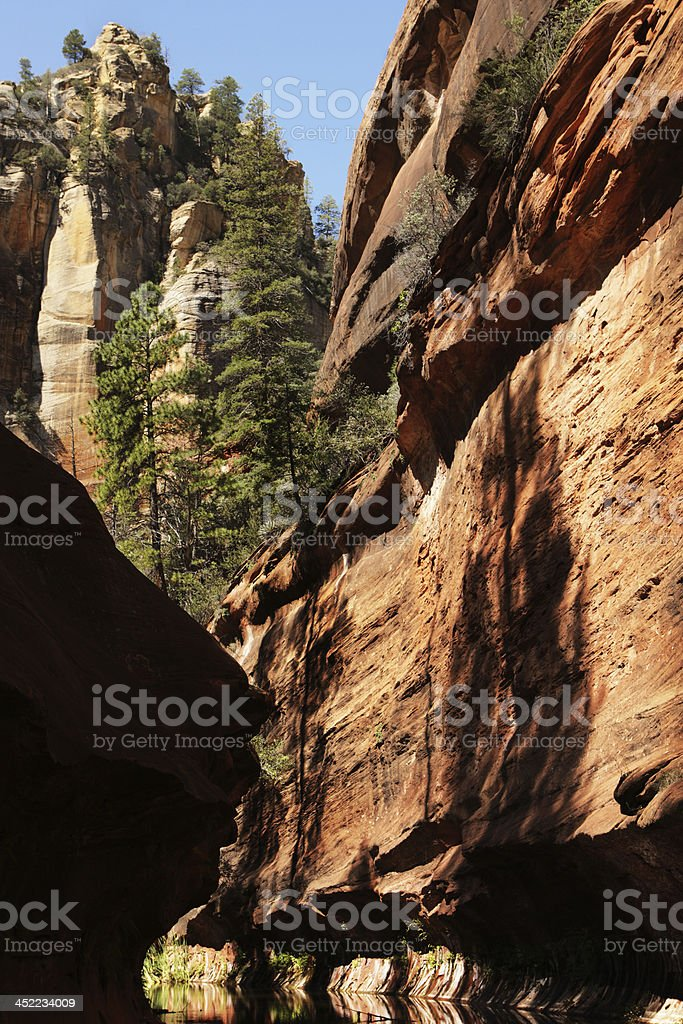 Canyon Stream Red Rock Cliff Wilderness royalty-free stock photo