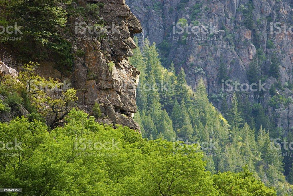 Canyon View Spring stock photo