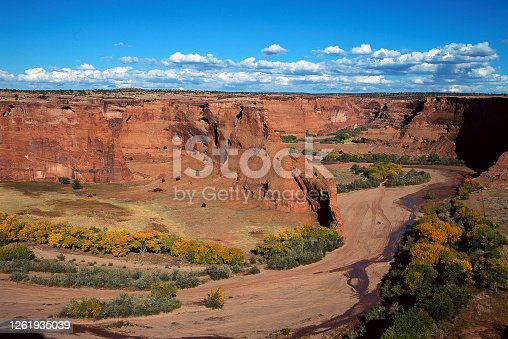 Vista view at an overlook of the bottom of a canyon with Cottonwood trees turning to golden colors in Canyon de Chelly