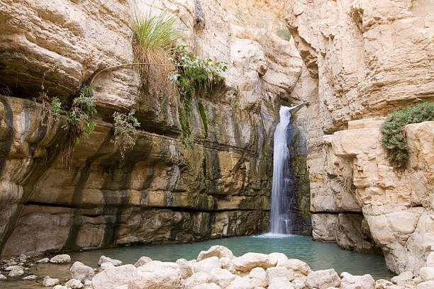 canyon waterfall - nature reserve stock photos and pictures